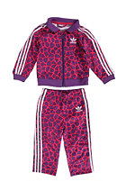 ADIDAS Firebird Giraffe Track Suit power purple s12/bright pink f12