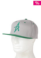 ALTAMONT Decades Starter Cap green