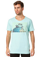 ANERKJENDT Paris S/S T-Shirt aqua splash