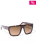 ASHBURY Crenshaw brown tortoise