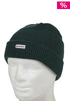 ASHBURY The OG Beanie green