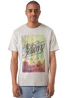 BILLABONG Burn Out S/S T-Shirt grey heather
