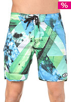 Exposure Boardshorts blue