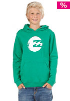 BILLABONG Kids/ Boys No Wave Hooded Sweat 2013 kelly