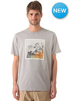 CARHARTT Parade S/S T-Shirt grey heather/multicolor