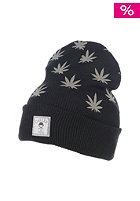 CAYLER & SONS Budz n Stripes Oldschool Beanie black/reflective