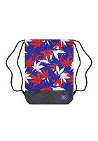 CAYLER & SONS French Erbz Gym Bag blue/white/red