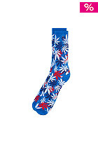 CAYLER & SONS French Erbz Socks blue/white/red