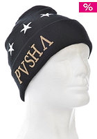 CAYLER & SONS Pusha Beanie black/mc