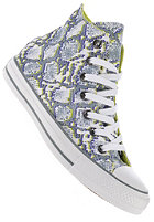 CONVERSE Womens Chuck Taylor All Star Print Hi white/puritan gr