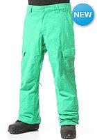 DC Banshee 15 Pant bright green