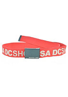 DC Chinook 5 Belt athletic red