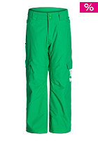DC Kids Banshee 15 bright green