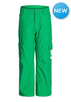 DC Kids Banshee 15 Pant bright green