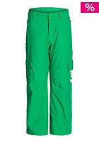 DC Kids Banshee 15 Pant bright green
