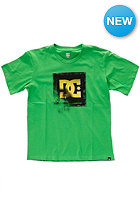DC Kids Blowout BY S/S T-Shirt grass stain