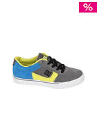DC Kids Cole Pro grey/blue