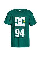DC Kids Dc94 S/S T-Shirt cadmium green