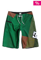 DC Kids Raptor BY Boardshort emerald