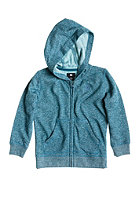 DC Kids Rebel Hooded Zip Sweat heath bluestone