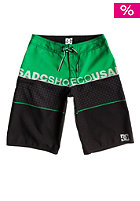 DC Kids Released Boardshort emerald