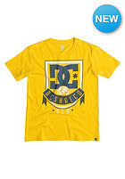 DC Kids Royal Banner spectra yellow