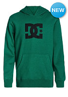DC Kids Star Hooded Sweat cadmium green