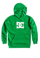DC Kids Star Hooded Sweat emerald