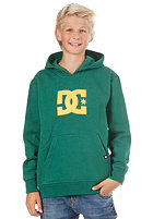 DC KIDS/ Star Hooded Sweat evergreen