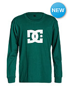 DC Kids Star Longsleeve cadmium green