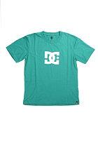 DC Kids Star S/S T-Shirt cadmium green