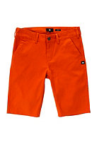 DC Kids Worker Straight EU BY Chino Short flame