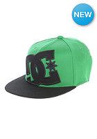 DC Kids Ya Heard2 210 Flexfit Cap emerald