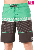 DC Released Boardshort emerald