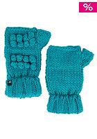 DC Seneca Glove 2013 seaport