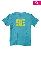 DC Snowastar 14 S/S T-Shirt bluebird