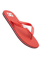 DC Spray Graffik Sandals ath red/white