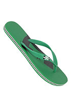 DC Spray Graffik Sandals emerald/black