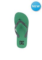 DC Spray Sandals fern
