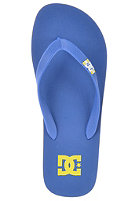 DC Spray Sandals royal/dawn