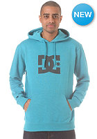 DC Star Hooded Sweat heather caribbe