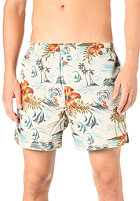 DEAL Boxershorts  Waves