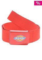 DICKIES Gainesville Belt fiery red
