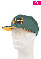 DICKIES South Peak Cap green