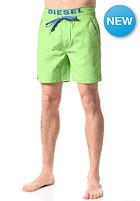 Dolphin Boardshort green