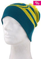 DRAGON Riley Stripe Beanie teal