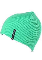 ELECTRIC Eaglet Beanie green