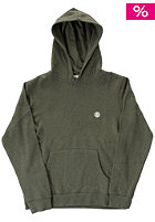 Kids Cornell Hooded Sweat sage