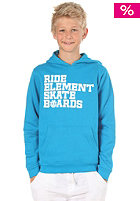 ELEMENT KIDS/ Do It Hooded Sweat baltic