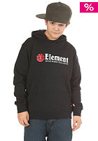 ELEMENT KIDS/ Horizontal Hooded Sweat 2012 black